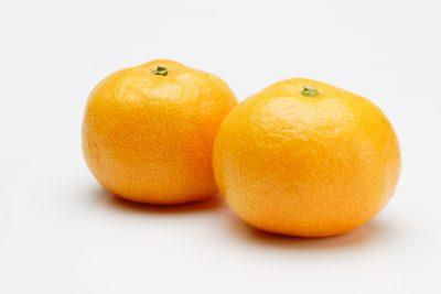 サツマオレンジ
